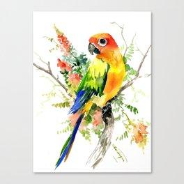 Sun Conure Parakeet, tropical colors parrot art design Canvas Print