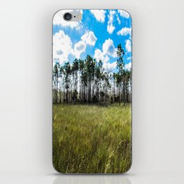 Cypress Trees and Blue Skies iPhone Skin