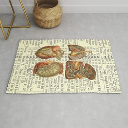 Beautiful Body Parts on Vintage Farmers Almanac page Rug