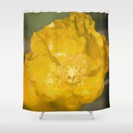 Yellow Poppy Shower Curtain