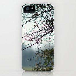 Bare branches iPhone Case