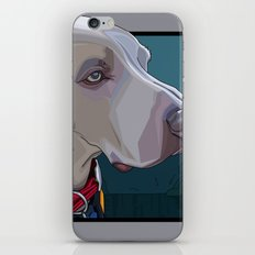 Jake Dog iPhone & iPod Skin