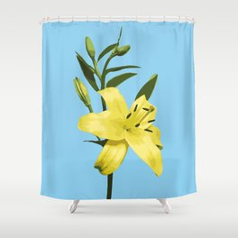 Yellow Lily on Sky Blue Background Illustrated Print Shower Curtain