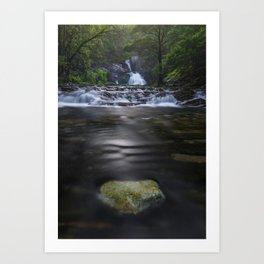 Mountain river among the forest Art Print