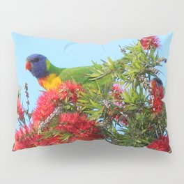 Rainbows and Brushes - Australian Lorikeet Pillow Sham