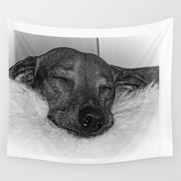 Dachshund Sleeping Peacefully on Stuffed Animal, Black and White Wall Tapestry