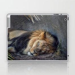 The Lion Sleeps Tonight Laptop & iPad Skin