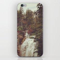 Shawangunk Mountains Waterfall iPhone & iPod Skin