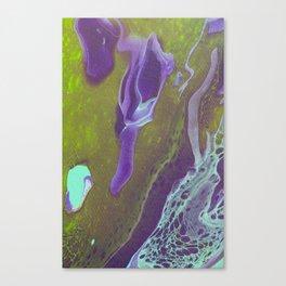 Fluid Art Acrylic Painting, Pour 32, Green, Purple, & Turquoise Blended Color Canvas Print