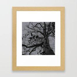 SWW 003 Framed Art Print