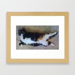 Just resting Framed Art Print