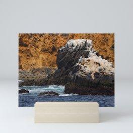 Sunbathing Sea Lions Mini Art Print
