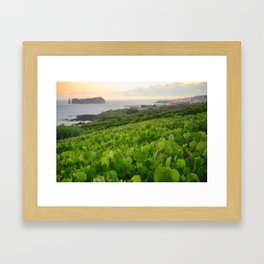 Grapevines and islet Framed Art Print