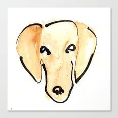 Daschshund Canvas Print