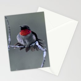 Ruby-throated Hummingbird Stationery Cards
