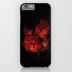 Scarlet Amaryllis iPhone 6s Slim Case