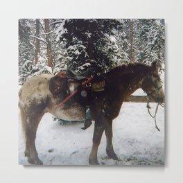 Winter Work Metal Print