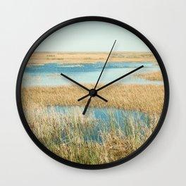 My Everglade backyard Wall Clock