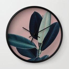 Ficus elastica - berry Wall Clock
