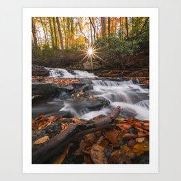 Autumn Stream Art Print