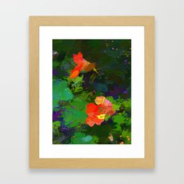 Nasturtiums in the garden Framed Art Print
