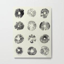 Spore Prints Metal Print