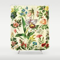botanical Shower Curtains featuring Botanical by bbay