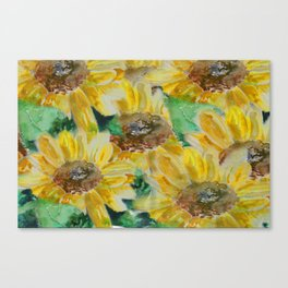 Sunflowers field Canvas Print