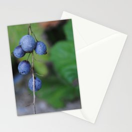 Looks like blueberries Stationery Cards