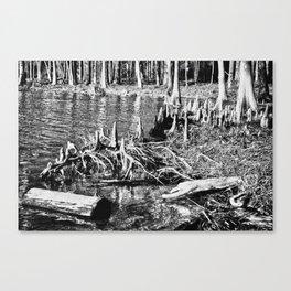 On the Bayou. Canvas Print