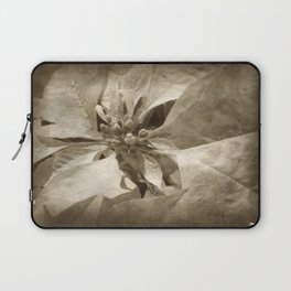 Pale Yellow Poinsettia 1 Antiqued Laptop Sleeve