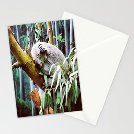 Kozy Koala  Stationery Cards
