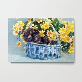 Kitten In Summertime Basket Metal Print