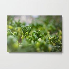 Little Alien Forest - Flower Six Metal Print