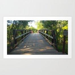 Bridge through the woods Art Print