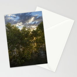 Mangroves at Sunset Stationery Cards