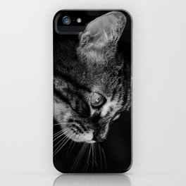 kitten in black and white iPhone Case