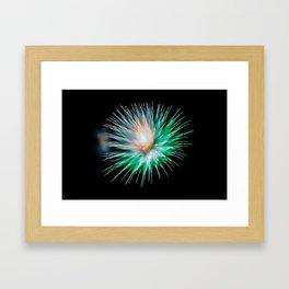 Firework Creations - Tulipfest 14 Framed Art Print