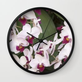 Longwood Gardens Orchid Extravaganza 1 Wall Clock