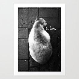 Cat is Love 2  Art Print