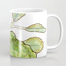tea botanicals   Bergamot // earl grey Coffee Mug