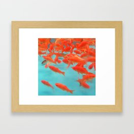 Goldfish Keep Swimming Framed Art Print