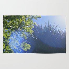 Sun/Trees Rug