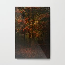 Fire of autumn Metal Print