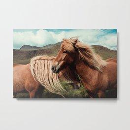 Horses in love Metal Print
