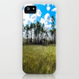 Cypress Trees and Blue Skies iPhone Case
