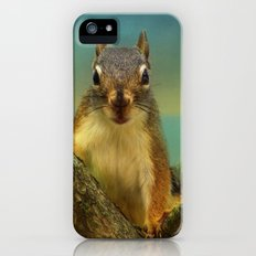 Little Red Squirrel Slim Case iPhone (5, 5s)