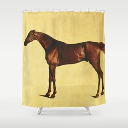 George Stubbs - Pangloss Shower Curtain