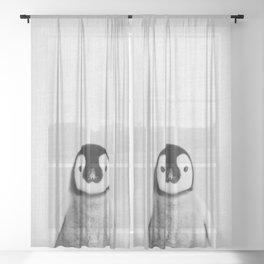 Baby Penguin - Black & White Sheer Curtain