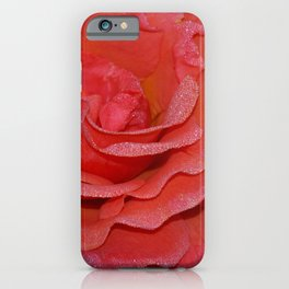 Lovely coral rose iPhone Case